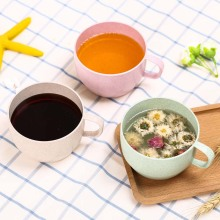 Creative Eco-friendly Candy Color Wheat Straw Mug Coffee Milk Breakfast Cup Cute Porcelain Tea Mugs 250ml Novetly Gifts