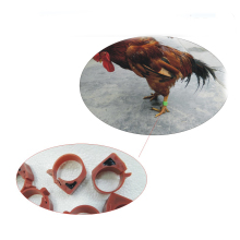 Poultry automated management 100PCS chip EM4305 125-134.2KHZ RFID tag, foot ring with electronic tags()