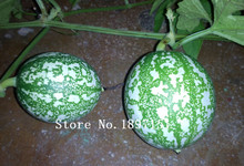 Big sale Hot selling Small Yellow Water Melon Seeds, Original Package 30 pcs Fruits seeds Watermelon Seeds