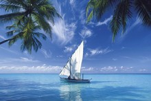 coconut trees sailing blue clouds sea landscape poster silk fabric cloth print wall sticker Wall Decor custom print