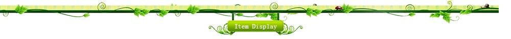 item display