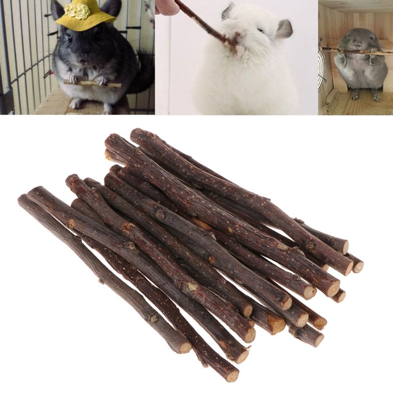 Esme 40Pcs Organic Apple Sticks Wood Tree Branches Pet Snacks Chew Toys Branch for Guinea Pigs Chinchilla Squirrel Rabbits Hamster Small Animals
