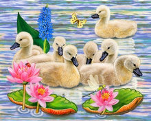 Handicraft Needlework pattern DIY Diamond Painting Cross Stitch animal ducks Diamond Embroidery Round Rhinestone Mosaic Picture(China)