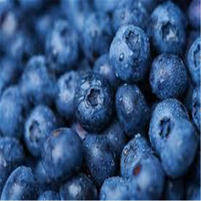 Blueberry seed Fruit seeds Potted blueberry 20seeds