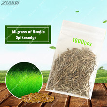 ZLKING 1000pcs Aquarium Landscape Plant Grass Seeds Fish Tank Aquarium Plant Seeds Aquatic Decoration Easy To Grew Bonsai Seed