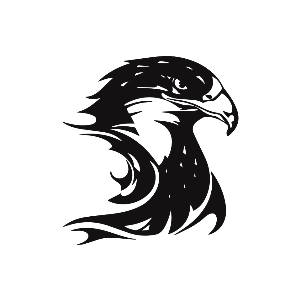 Cunymagos Fire Flame Eagle Hawk Head Decal Car Sticker Vinyl Car Styling Accessories Motorcycle Auto Wall Stickers 13.3CM14 (3)
