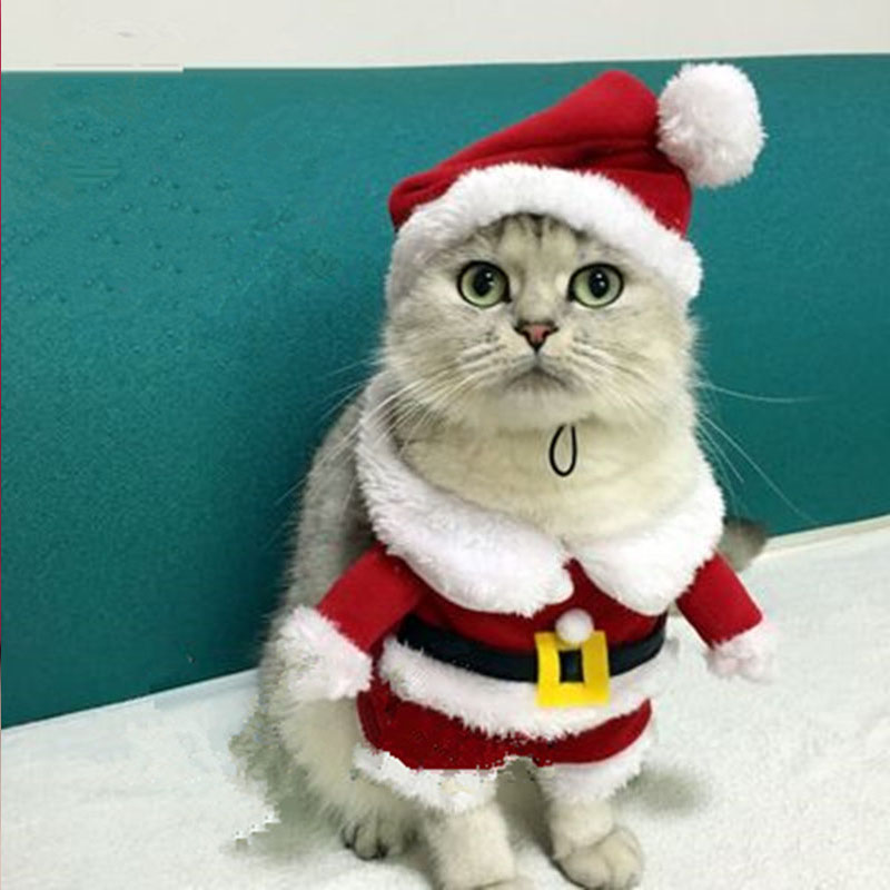 Christmas Cat Clothes Pet Dog Cat Costume Santa Claus Costume ...