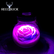 Led RGB Night Lamp 5050 SMD Beautiful 16 Colors Rose Flower Lights Wish Bottle Romantic Night Light Creative Gift Decor Led Lamp