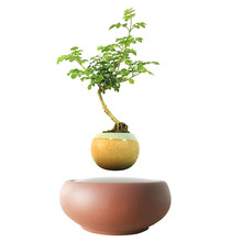 2017 japan magnetic levitation Floating Plants Ceramics Pots bonsai pot birthday Gifts for Men free shipping (no plant)
