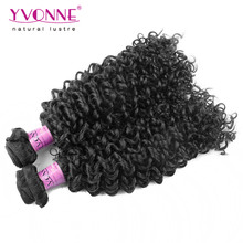 2Pcs/lot Grade 7A Brazilian Curly Virgin Hair,New Arrival Malaysian Curly Hair,Aliexpress YVONNE Hair Products,Color 1B