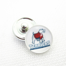 10pcs NCAA St. Francis (NY) Terriers Snap Buttons 18mm Sports snap buttons Diy Snaps Jewelry Bracelet&bangles charms