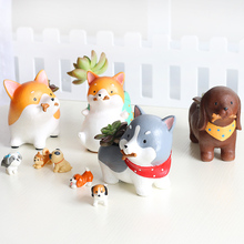 Succulents Flowerpot Kawaii Zakka Akita Dachshund Husky Dog Pets Resin Planter Flower Pot Micro Landscape Garden Home Decoration(China)