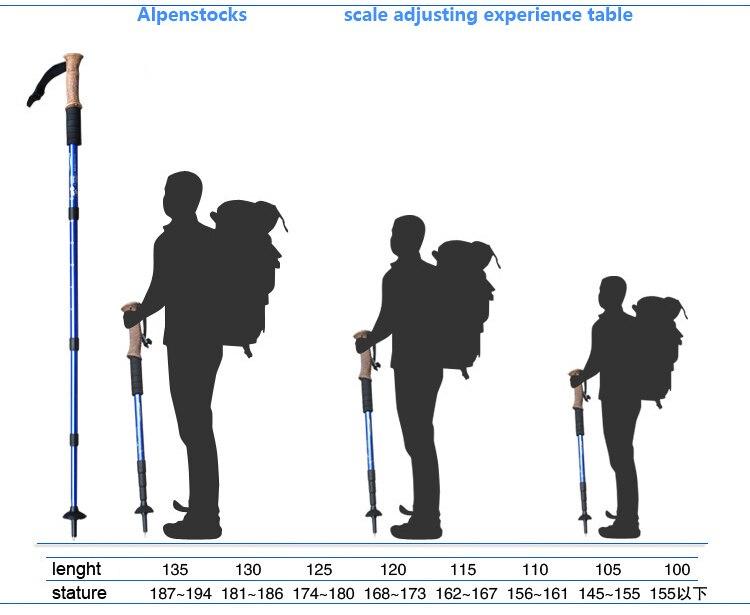 walking stick (2)
