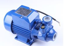 QB60 Electric Clean Water Pump Working On 220 volts or 110 volts(China)