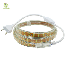 Tanbaby Double Row SMD 2835 LED Strip AC 220V 156 leds /M Waterproof High brightness White flexible rope outdoor home decoration