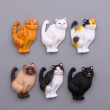 6pcs/set Japan Shit Cat Cartoon 3D Action Figure Magnet Pattern Fridge Magnet Stickers Children Educational Toy Birthday Gift(China)