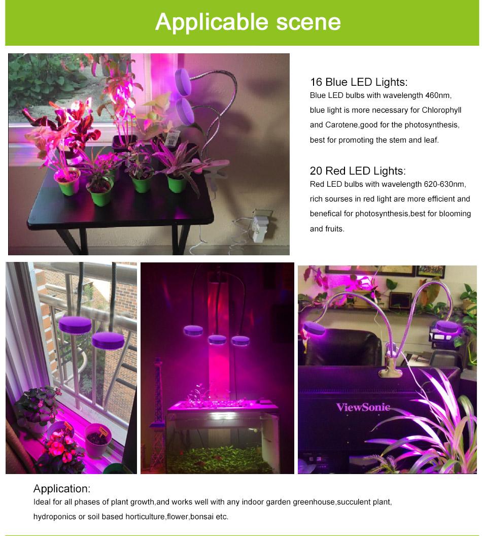 led-grow-light-950_05