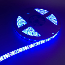 5M 5050 SMD LED Strip light 12V IP65 Waterproof 300 LED Red/Yellow/Blue/Green/White/Warm White(China)