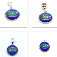 2017 Fashion Jewelry University of Florida NCAA Charm Pendant Fit Bracelet DIY Dangle Charms Women Gifts