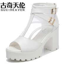 Guciheaven Mature Women Sandals,2017 Rough High Heels,Sexy Air Mesh Sandals,Easy Matching Footwear,Comfortable Cover Heel Shoes(China)