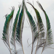 10pcs Peacock Sword Feather 30-35cm /12-14inch Natural Green Iridescent plumage Left & Right DIY Craft Decoration(China)