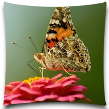 Butterfly and flowers Good Quality Pillow case 2d Printed cotton polyester For Soft Throw Chair Seat Cushion cover