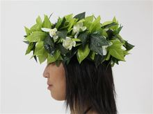 New ! Free shipping KL36173B  50PCS / LOT 6 colors mixed  50cm  Maile   w tuberose  headband w fabric MAGIC HEADBAND Hawaii