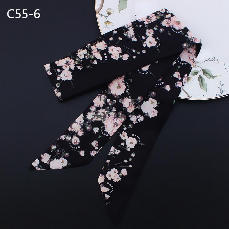 C55-6 (2)