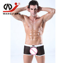Gay Calzoncillos String Homme Transparent Mens Sexy Underwear Boxers Cueca Men Underwear Boxers Nylon WJ Short Penis 2004 PJ(China)