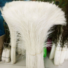 Wholesale,100pcs Rice white Peacock Tail Feathers about 32-34inches / 80-90cm(China)
