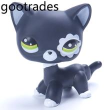 Littlest Pet Shop Коллекция LP Игрушечные лошадки короткие волосы кошка Блайт черный редкий котенок(China)