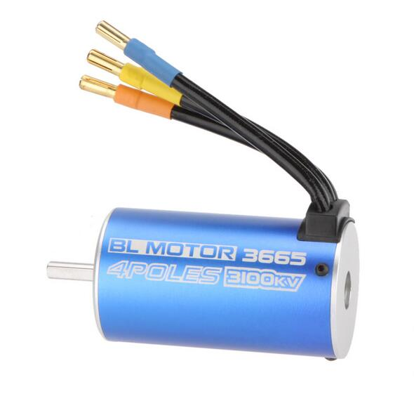 Free Shipping High Quality BL Motor 3665 4Poles 3100KV Brushless Motor for RC Car Boat<br>