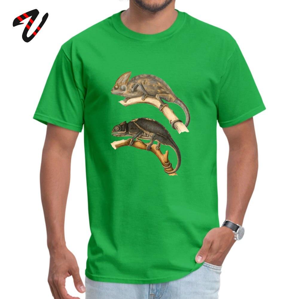 Chameleon Scientific Illustration Summer Cotton Round Neck Tops Tees Short Sleeve Funny Sweatshirts New Arrival Top T-shirts Chameleon Scientific Illustration 12047 green