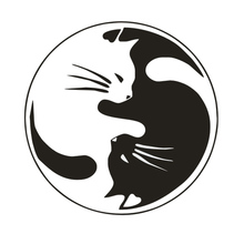 15*15CM Yin And Yang Cat Automobile Styling Decorative Decal Personalized Car Window Glass Sticker(China)