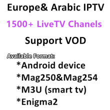 1 Year Arabic French UK Europe IPTV iprotv code 1500+ Channels for Android USB Wifi TV Box
