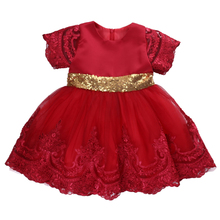 Summer Sequins lace tutu dress Infant Baby Girl Birthday Wedding Pageant Party Princess Lace Tutu Flower Dress(China)