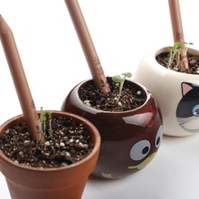 Outdoor 1 box 8 Item Novel Exotic Sprouts Pencil Germination Can Be Planted Pencils Buds Contains Different Seeds(China)