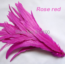 Rooster tail feather Rose Red Colors DIY feather clothing  jewelry accessories / wedding Party supplies performance necessary