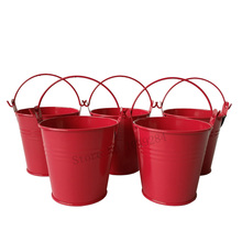 D7.5*H7.5CM Red Mini Pail Metal Buckets Cute Meat plant pot Garden Nursery pots small seed bucket(China)