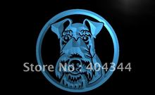 LB695- Wire Fox Terrier Dog Pet NR LED Neon Light Sign(China)