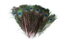 100pcs/lot wholesale 25-30cm 10-12 Inch beautiful natural peacock feathers eyes for DIY clothes decoration wedding party(China)