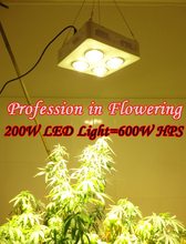 200W COB LED grow light =600W HPS Professional in flowering 3000-4100K High lumen high concentration  More energy-efficient