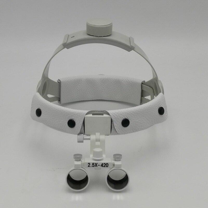 MGXS008-06