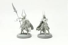 Warlords (Female + Male) Resin Model kit Free Shipping