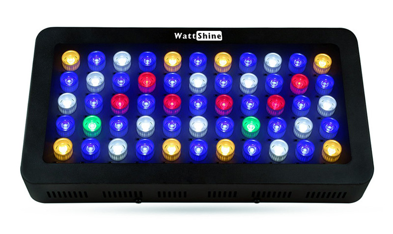 Aquarium Hood Fish Tank LED Light (Blue Red White) Lighting Color Changing Controlled Dimmable Used for Freshwater and Saltwater (7)