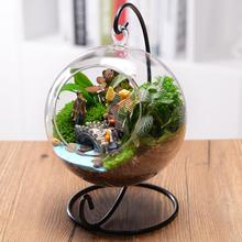 12cm Clear Round Glass Vase Hanging Bottle Terrarium Container Plant Flower Home Table Wedding Garden Decor Holder