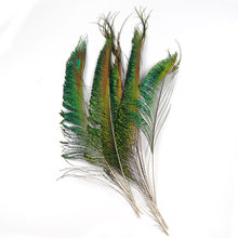 [20PCS] Peacock Sword Tail Herl Feather for Fly Tying Nymphs Wet Flies Fishing Material(China)