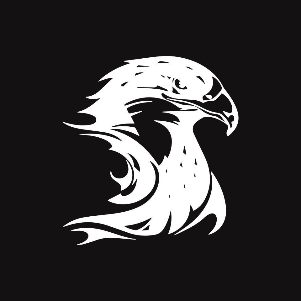 Cunymagos Fire Flame Eagle Hawk Head Decal Car Sticker Vinyl Car Styling Accessories Motorcycle Auto Wall Stickers 13.3CM14 (4)