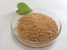 Natural weight loss Hoodia Extract/Hoodia Extract Powder/Hoodia Cactus Extract 4:1~20:1