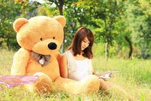 JUMBO  120cm giant High quality Low price Plush toys / teddy bear embrace bear doll /lovers/christmas gifts birthday gift